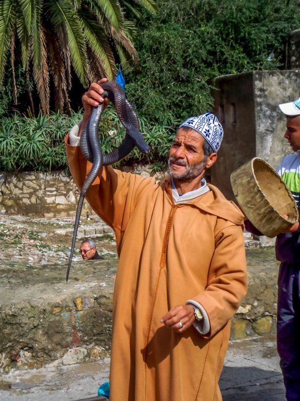 Snake charmer on a day trip from Tarifa to Tangier