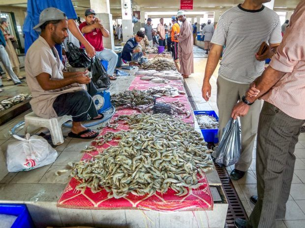 The Muttrah Fish Market is one of our favorite things to do in Muscat Oman.