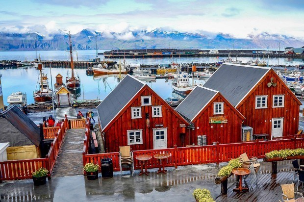 Whale watching in Husavik was a highlight of our Iceland one week itinerary.  The town of Husavik is also very charming.