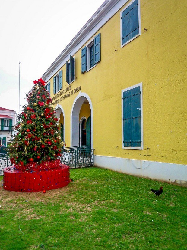 Christmas tree and rooster in St. Thomas