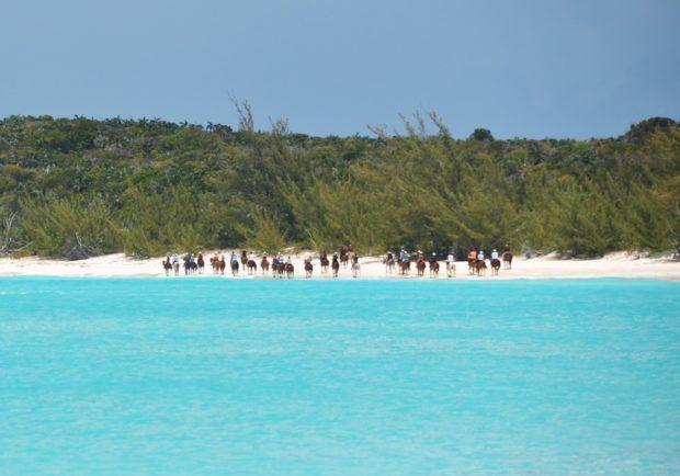 Horseback riding on the back at Half Moon Cay, Bahamas.