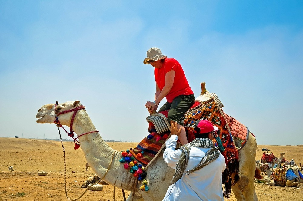 Trip to Giza: Rider boarding a camel while visiting the Great Pyramid of Giza. Camel rides at the Great Pyramid at Giza are the highlight of many Egyptian Pyramid tours.