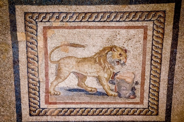 Restored lion mosaic at Ephesus