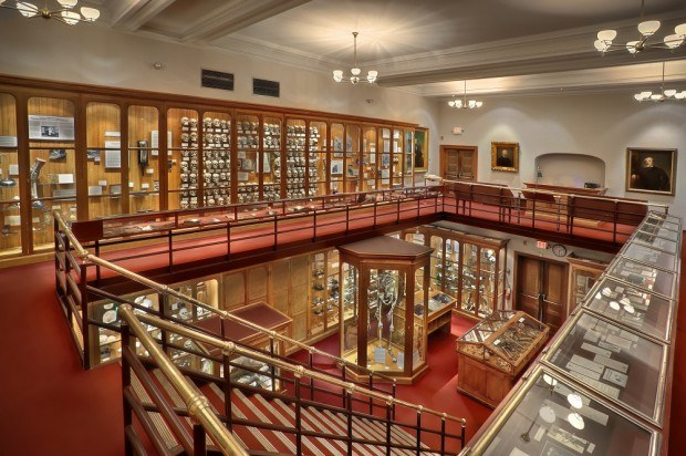 Central gallery of oddities at the Mutter Museum