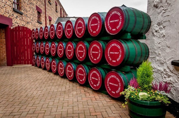 Casks on the Bushmills distillery tour