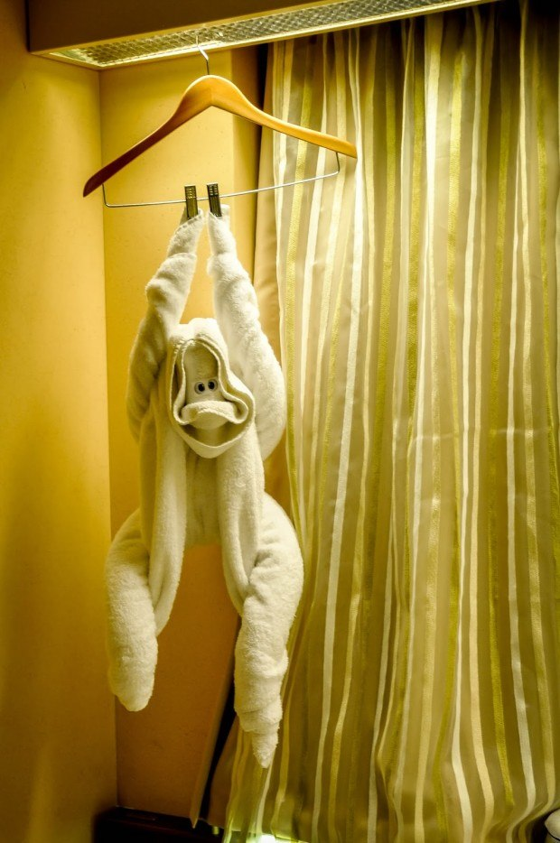 Where else can you find yourself a good towel monkey but on Christmas cruises?