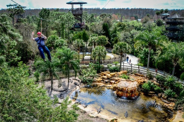 Flying over chomping alligators on the Screamin' Gator Zip Line at Gatorland