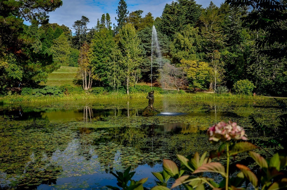 The pond and fountain at the Powerscourt Gardens Ireland