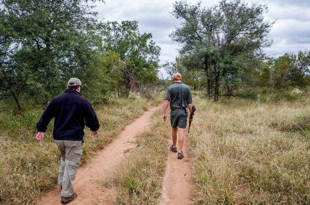 Hiking images:  In Africa, we pushed the definition of hiking, or bushwalking, to the limits.  As it turns out, the real benefits of hiking extended beyond the exercise and we were able to see some amazing animals.