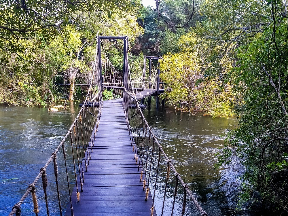 The suspension bridge over the water