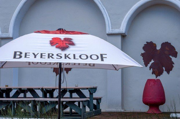 Beyerskloof winery on the Stellenbosch Wine Route in the South Africa Wine Region