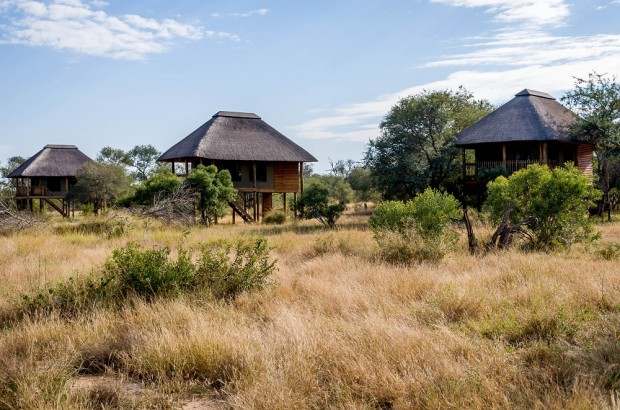 The chalet's at nThambo Tree Camp.