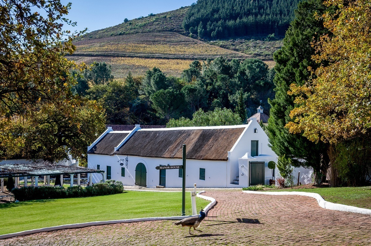 The Dutch colonial architecture at the Morgenhof Estate in Stellenbosch