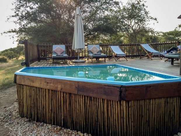 A great way to beat the mid-day heat at nThambo Tree Camp is to relax by the plunge pool.  Elephants frequently come to drink out of the pool!