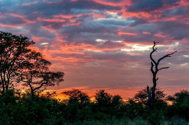 Stunning South African sunset