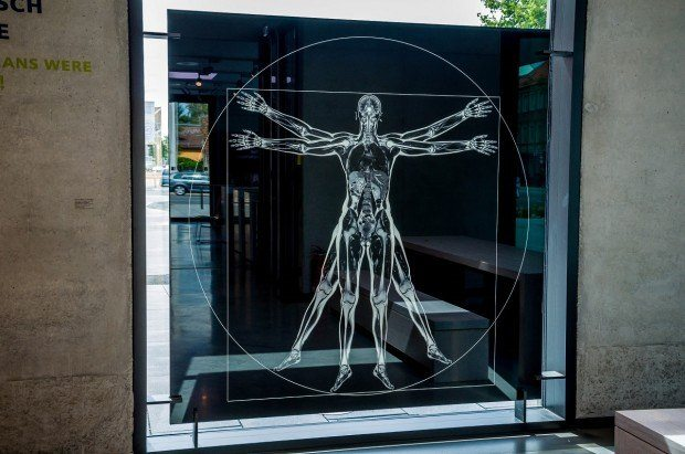Leonardo da Vinci's Vitruvian Man with accurate medical images, as seen at the Siemens Healthineers Med Museum.