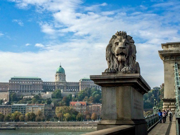 The Lions on the Chain Bridge, with Castle Hill and the Budapest funicular in the background.