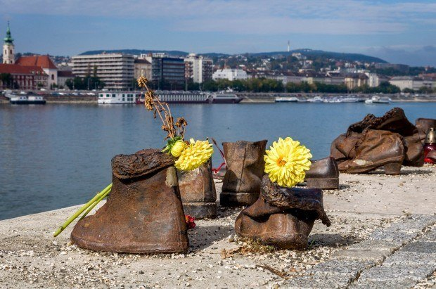 Yellow flowers in The Shoes on the Danube sculpture in Budapest, Hungary honoring the victims of the Holocaust.
