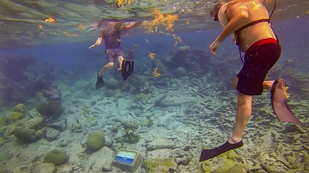 Snorkeling the Buck Island Underwater Trail as part of the Buck Island Reef National Monument in St. Croix.