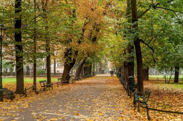 On our Krakow walking tour, we discovered the Planty - a park that rings the historic Old Town.