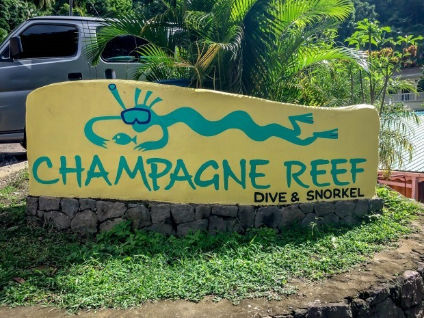 Snorkeling at the Champagne Reef in Dominica.