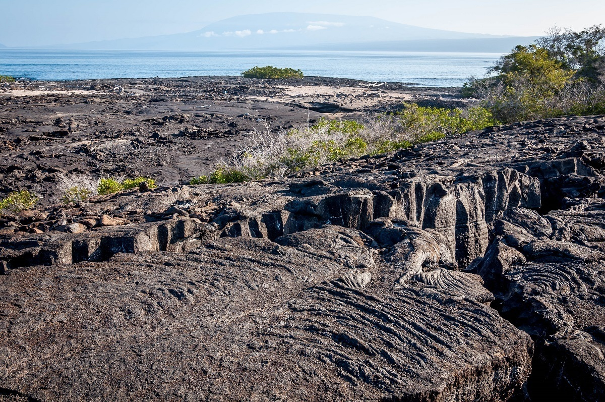 Lava flow at Punta Espinoza on Fernandina Island on the western Galapagos itinerary