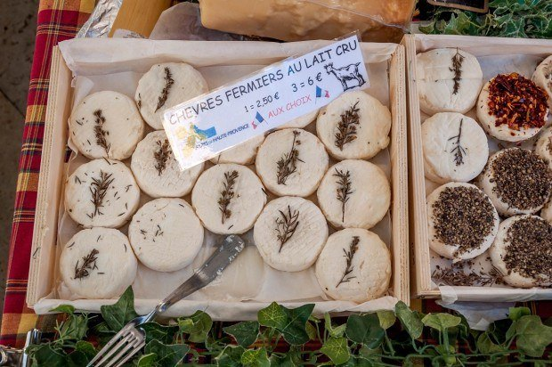 Delicious goat cheese for sale at a Provence market