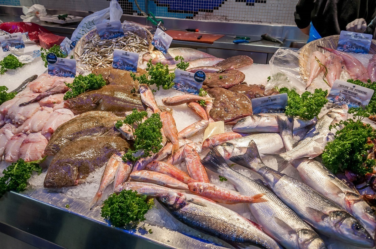 Raw seafood display