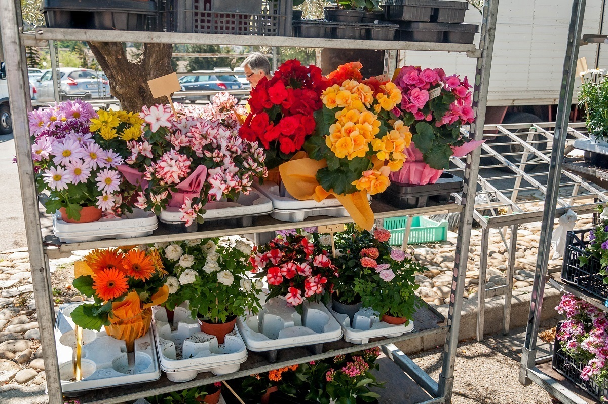 Flowers at the weekly Vaison la Romaine market