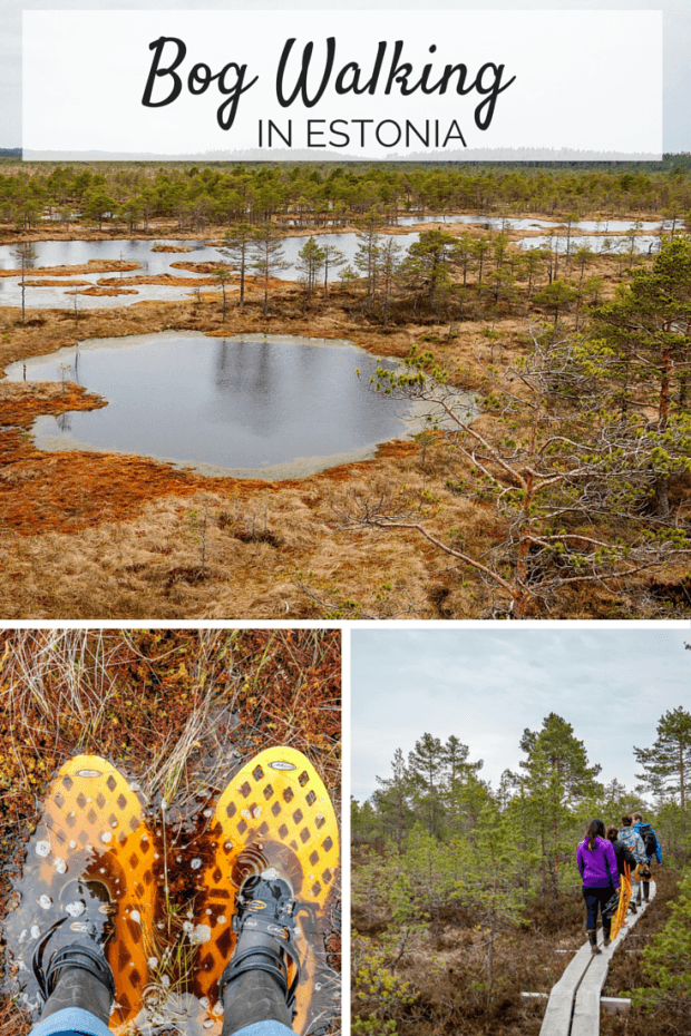 Bog walking and enjoying the outdoors are national pastimes in Estonia. Put on your bog walking shoes and get ready for a unique adventure.