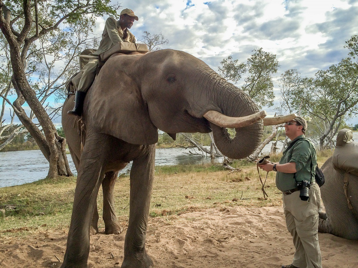 Feeding an elephant following an elephant ride