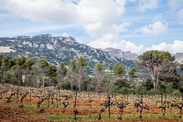 The vineyards and mountains of the Cotes du Rhone region of France