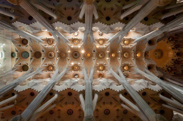 The ceiling of Sagrada Familia in Catalonia.