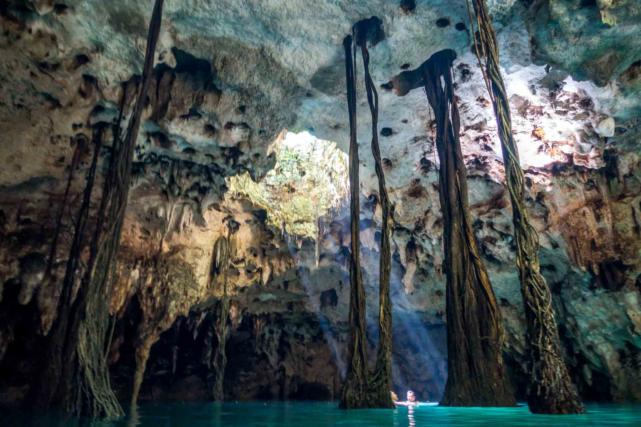 Inside a cave cenote with large roots near Cancun, Mexico