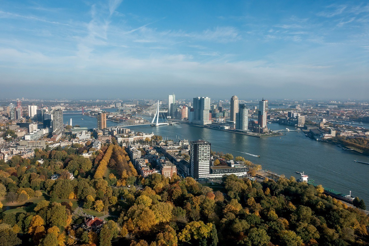 The skyline of Rotterdam, Netherlands, including buildings, bridges, and trees