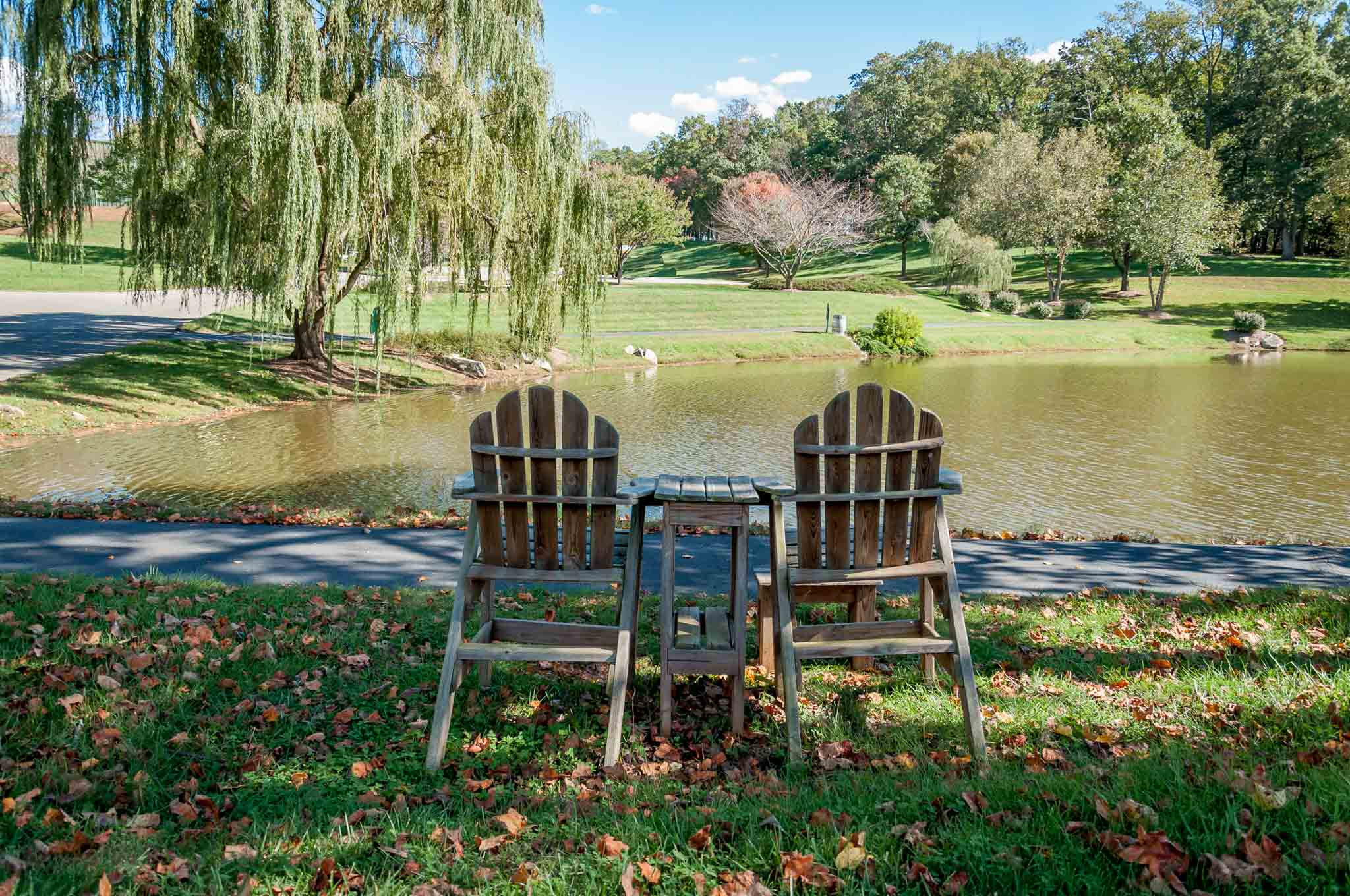 The beautiful grounds of Shelton Vineyards in Dobson, North Carolina, one of the Yadkin Valley wineries