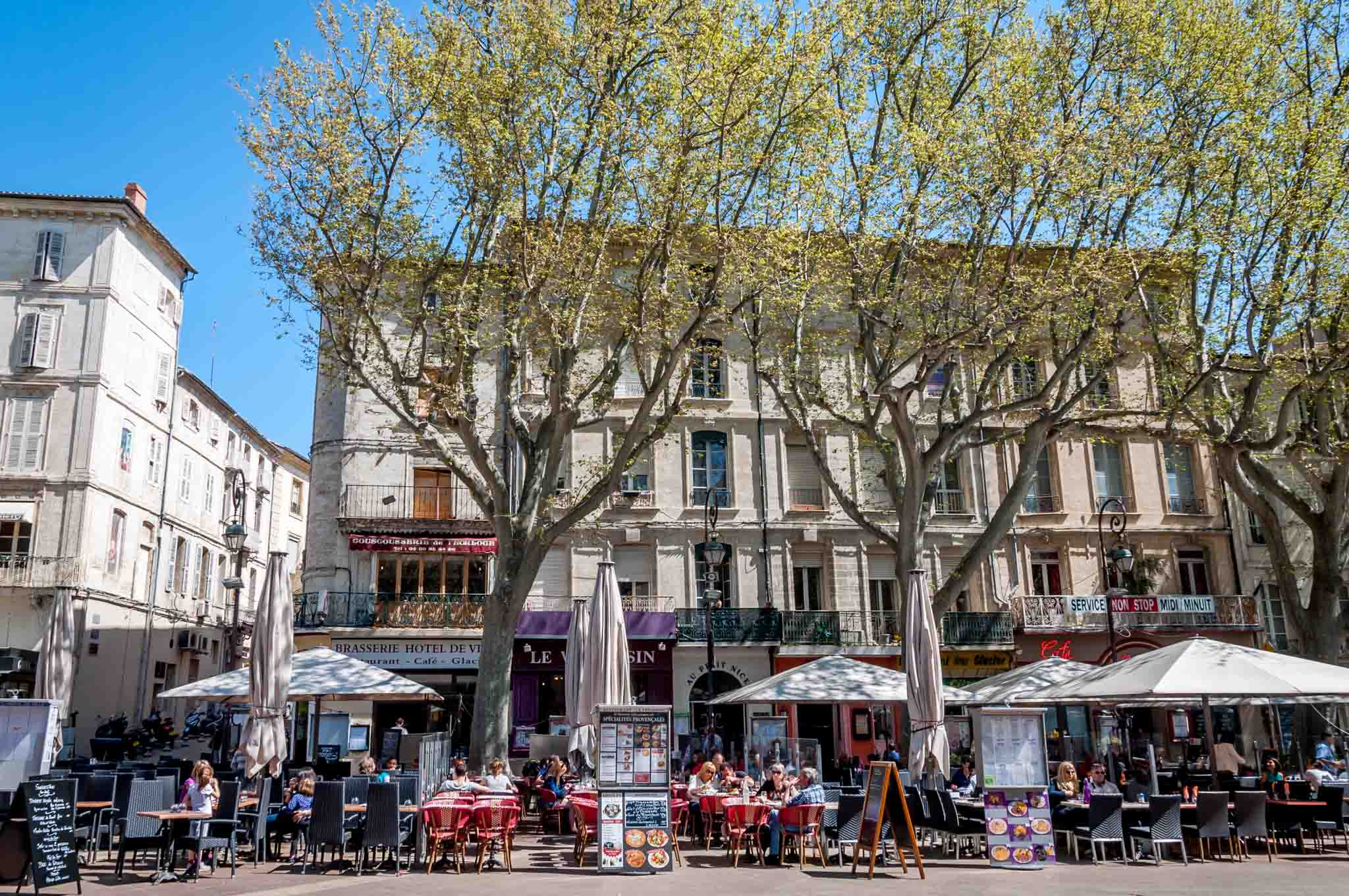 Outdoor cafes under the trees in Place de l'Horloge in Avignon France