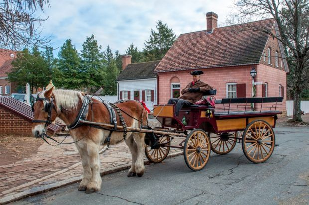 Take a carriage ride around Old Winston Salem, NC