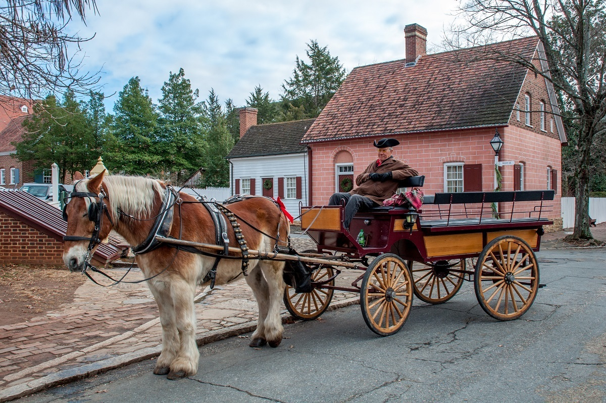 Horse drawn carriage at Christmas