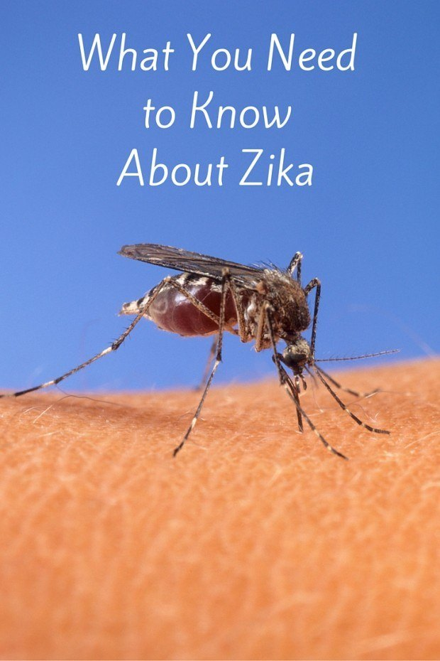 What you need to know about Zika and travel.