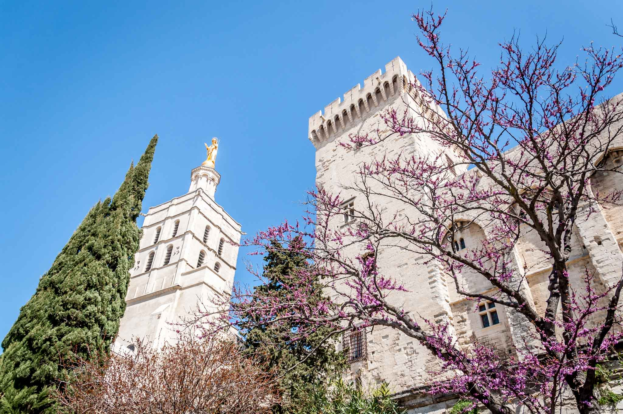 White exterior of Avignon's Palace of the Popes with trees in front