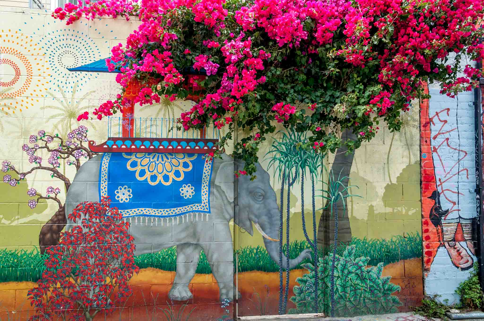 Elephant mural in Clarion Alley that combines with a tree with pink flowers