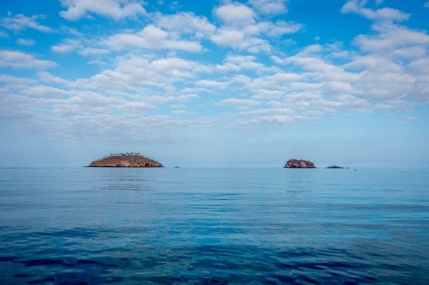 Off the coast of Isabela Island in the Galapagos