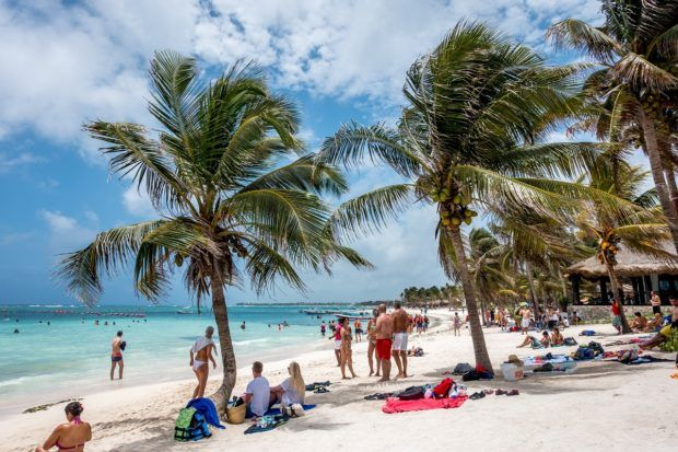 Top Tips to Snorkel with Sea Turtles in Akumal Bay - UPDATED