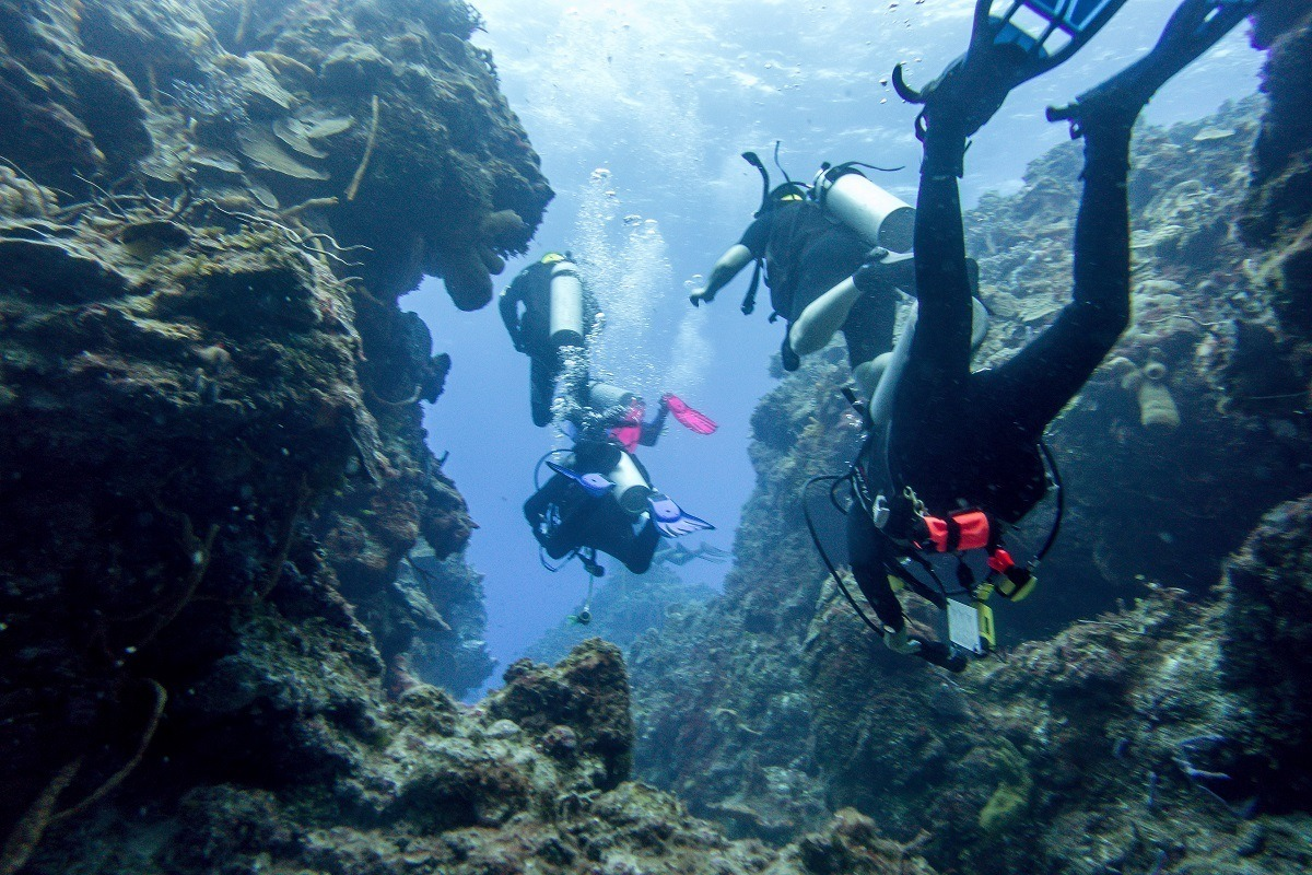 Our group diving some of the coral columns in Cozumel, Mexico.