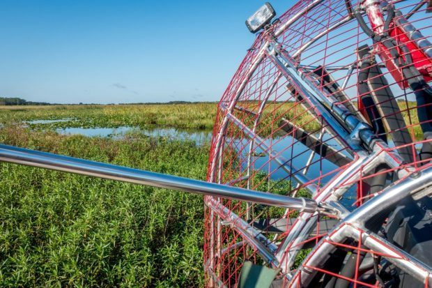An airboat ride on the swamp of Kissimmee, Florida