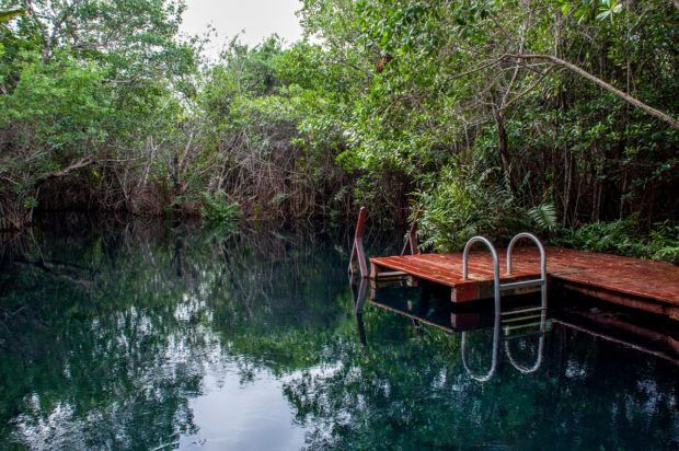 A cenote on the Tres Rios Nature Park property.