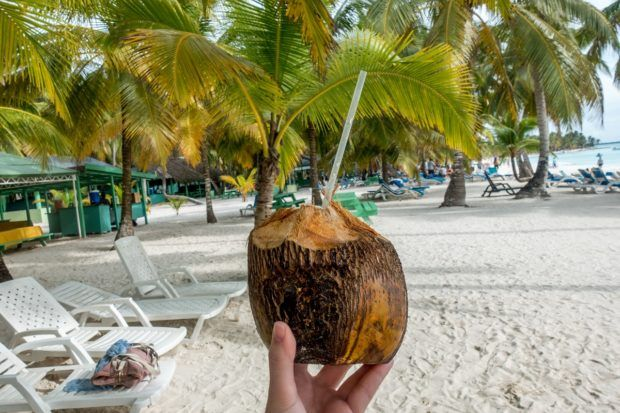 Drinking from a coconut on Saona Island, Dominican Republic