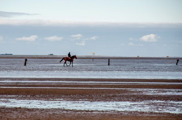 A lone horseback rider out on the salt flats of the Wadden Sea National Park near Cuxhaven, Germany.
