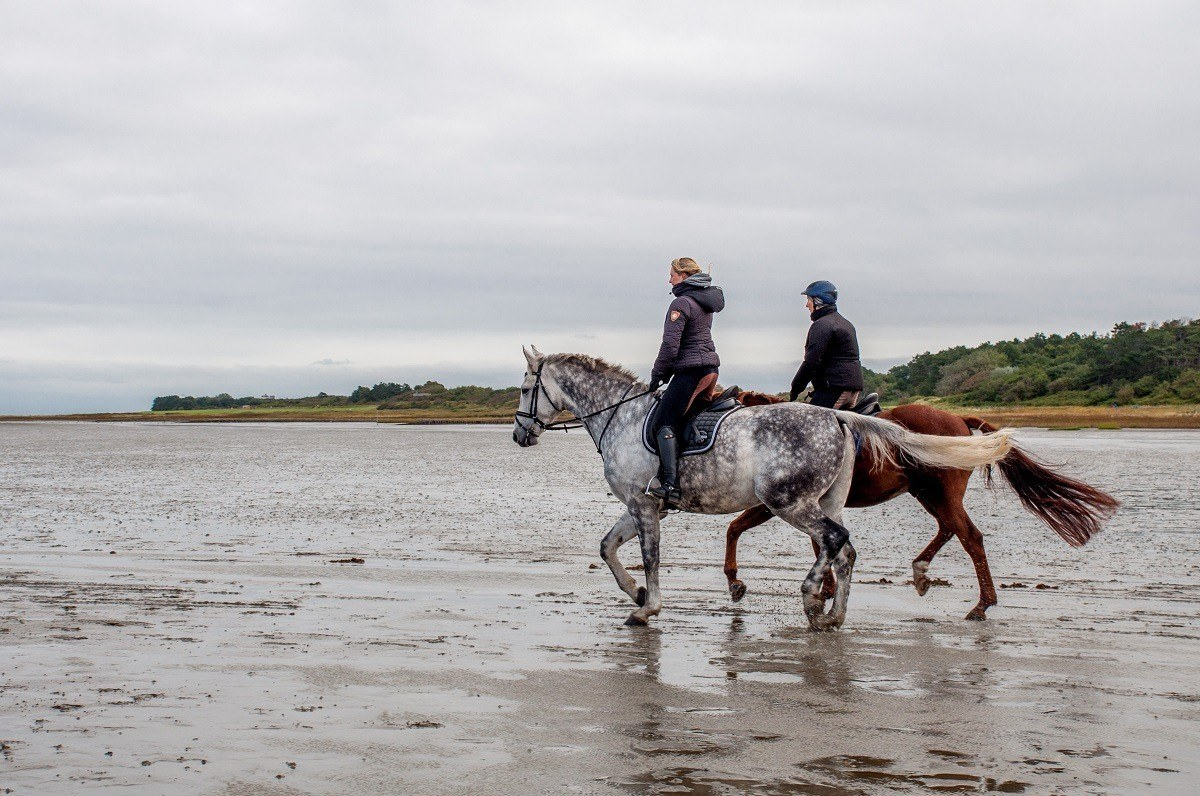 People ride horses out on the salt flats in the tidal basin